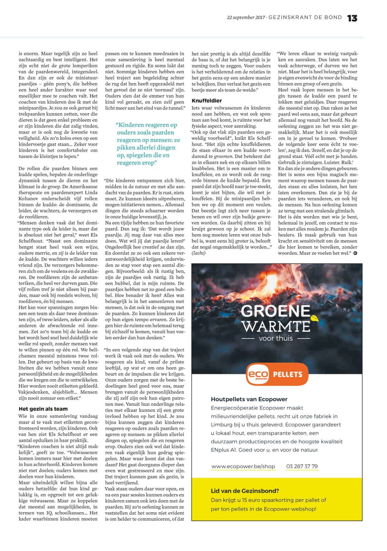 Artikel in De Bond